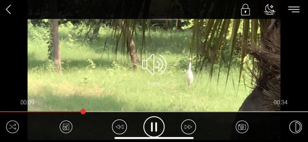 iPhone'lar için en iyi ücretsiz 10 video oynatma uygulaması